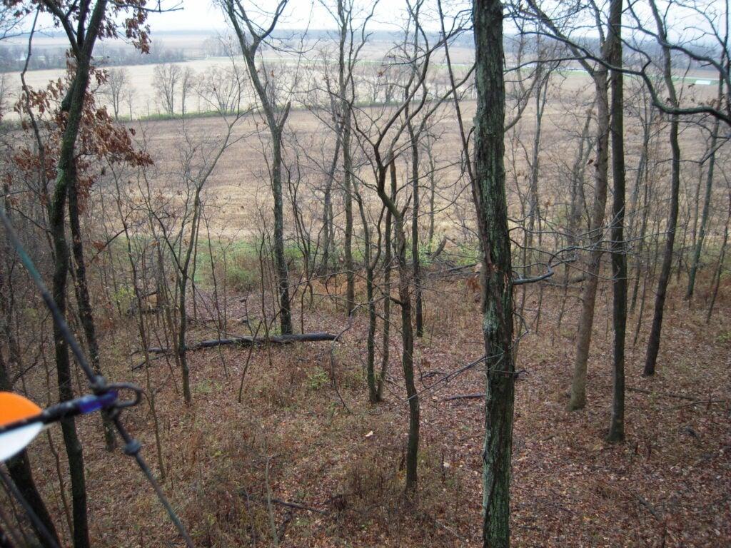 httpswww.outdoorlife.comsitesoutdoorlife.comfilesimport2014importImage2009photo6Day_2_stand.JPG
