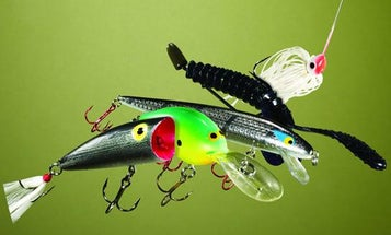Best Bass Lures: 16 Baits that Won the Bassmaster Classic