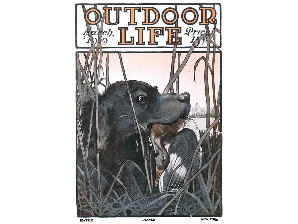 March 1909 cover of Outdoor Life