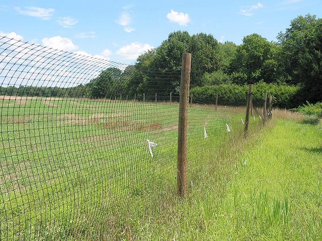 High-fence Debate hits North Dakota
