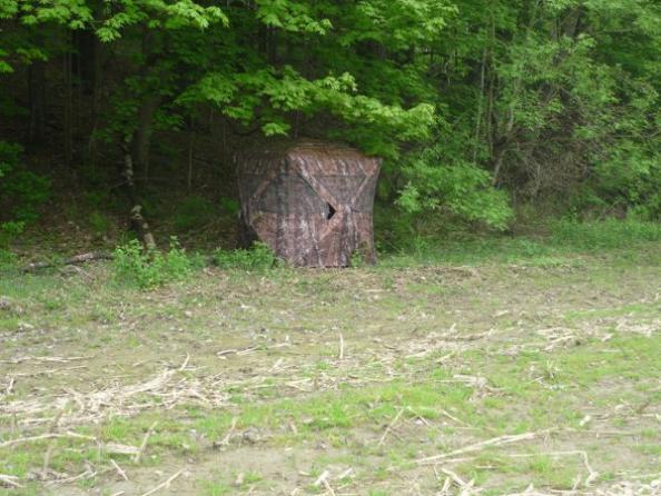 Firsthand Account: Shot by a Trespasser