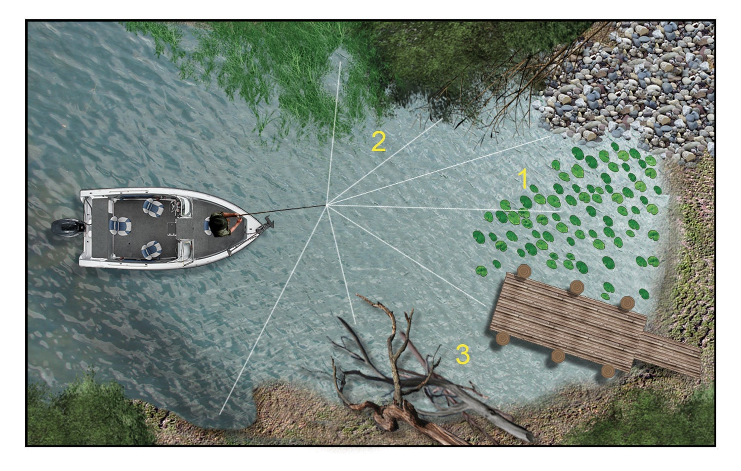 Summertime Bass Fishing: How to Catch a Limit in Any Body of Water