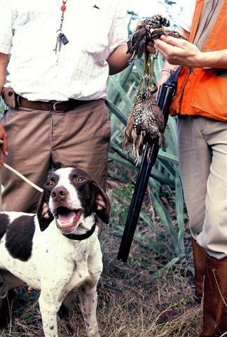 httpswww.outdoorlife.comsitesoutdoorlife.comfilesimport2014importImage2009photo723._Oklahoma.jpg
