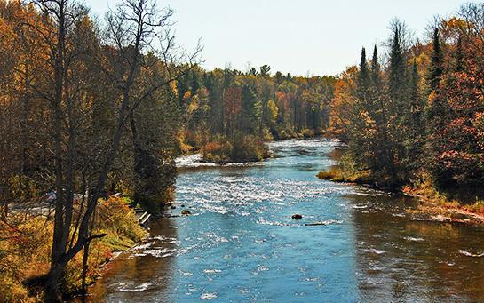 httpswww.outdoorlife.comsitesoutdoorlife.comfilesimport2014importBlogPostembedSept_14_-_Rifle_River_Fish_Habitat.jpg