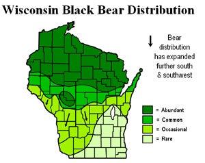 Wisconsin Bear Count