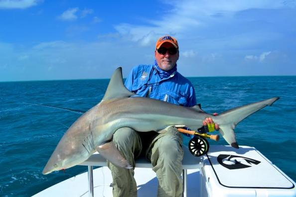 Fly Angler Releases Potential World-Record Blacktip Shark