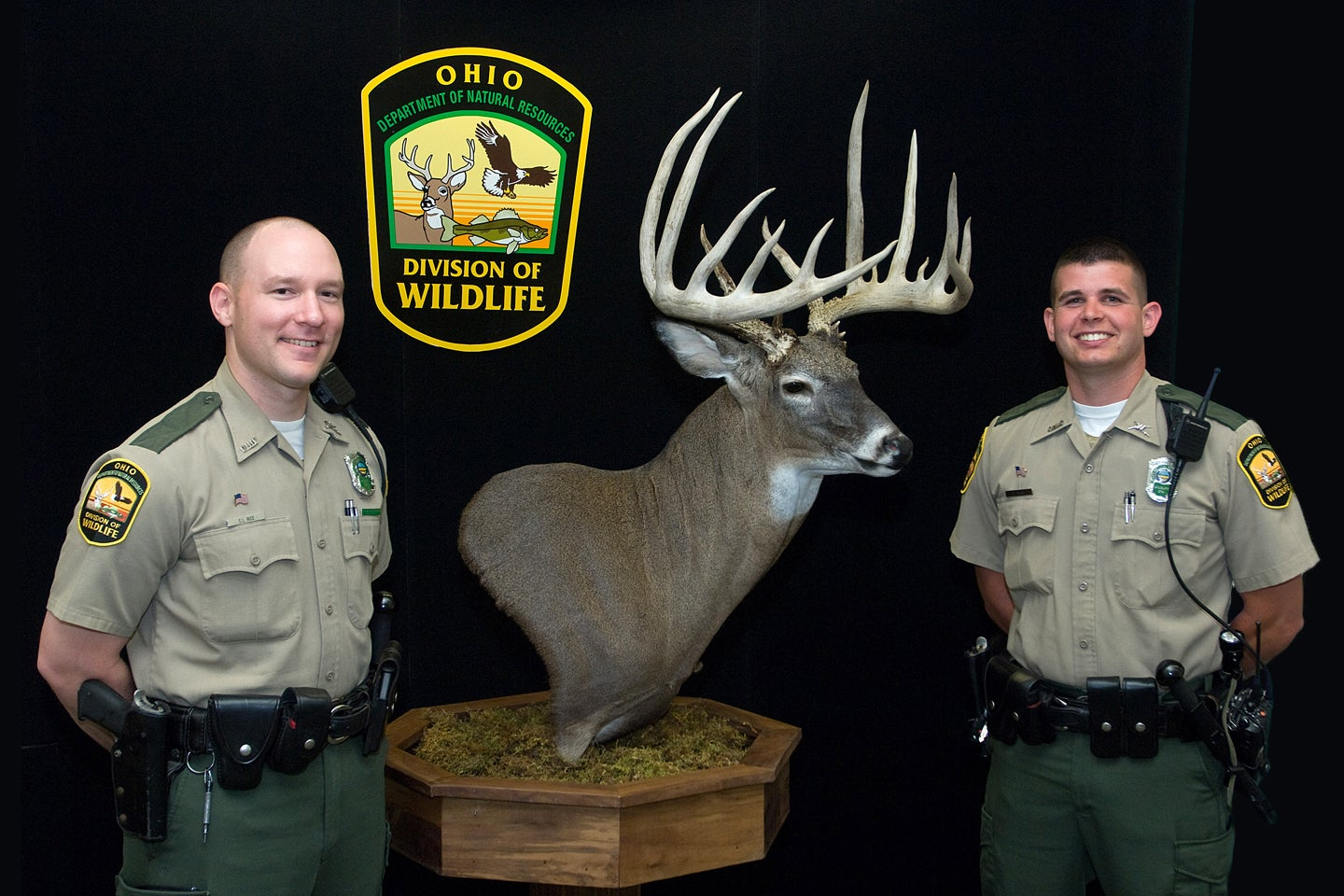 Poacher Robs Hunter Of Record-Book Buck