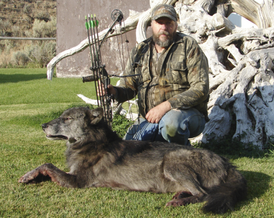 Idaho Elk Hunter Shoots Wolf That Stalked Him