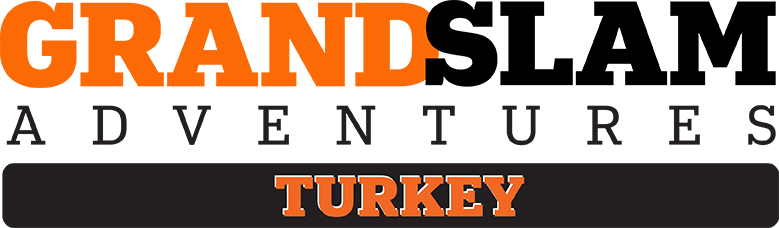 GS_Turkey_Logo