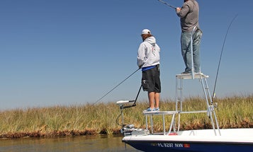 Why You Need a Fishing Tower