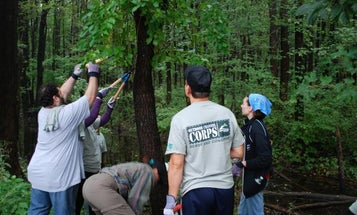 Boy Scouts and Outdoor Channel Team Up on Conservation Effort