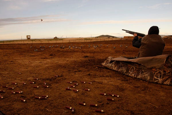 httpswww.outdoorlife.comsitesoutdoorlife.comfilesimport2014importImage2012photo1001321579pigeonshooting_04.jpg