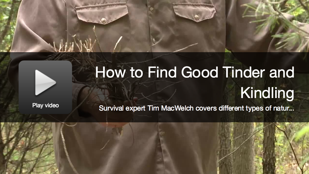 Survival Video: Find Great Tinder And Kindling