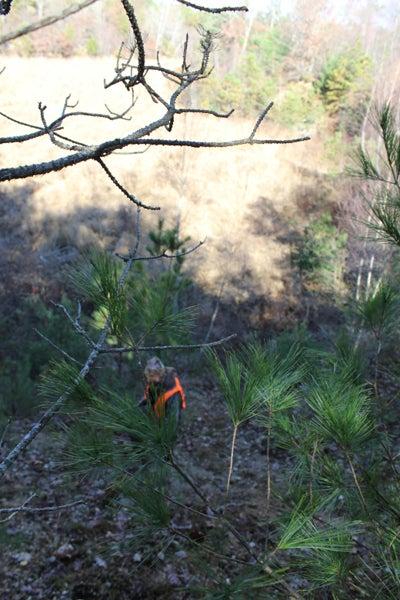 httpswww.outdoorlife.comsitesoutdoorlife.comfilesimport2013images201011RI_024_0.jpg