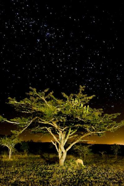 httpswww.outdoorlife.comsitesoutdoorlife.comfilesimport2014importImage2009photo7_DSC7721-Edit.jpg