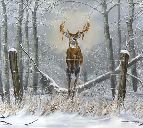 httpswww.outdoorlife.comsitesoutdoorlife.comfilesimport2014importImage2008legacyoutdoorlifedenault_paintings_GoforThrottleup.jpg