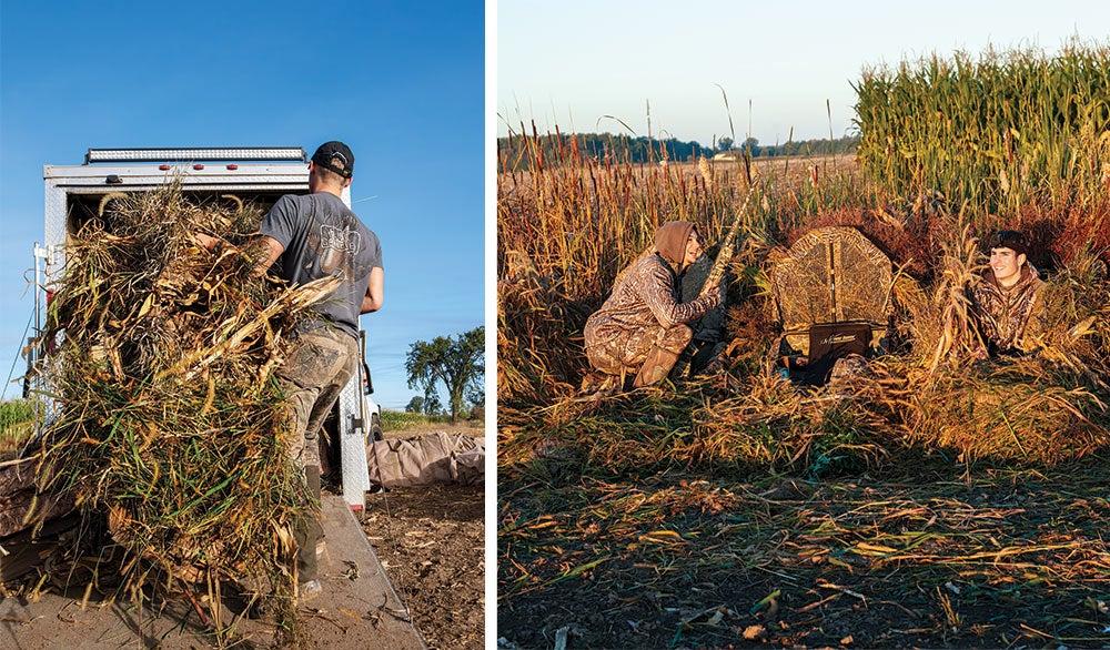 preparing hide layouts geese hunting