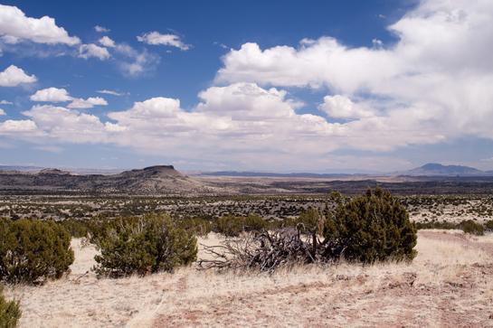 Rocky Mountain Elk Foundation Announces $30 Million Endowment, Largest Ever