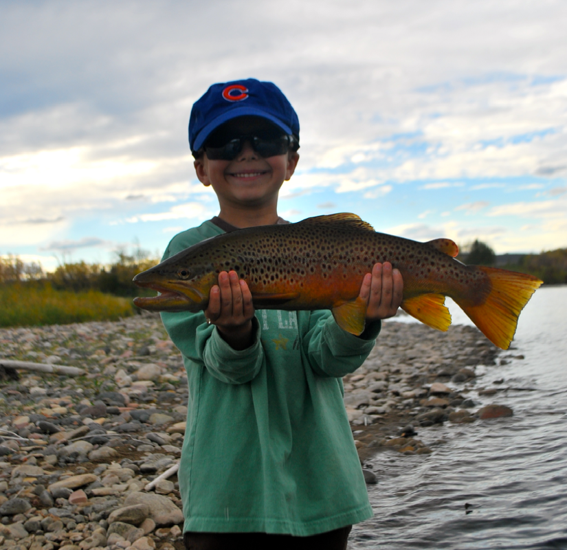 Fish America: Six Months, 10 Stories From the Road