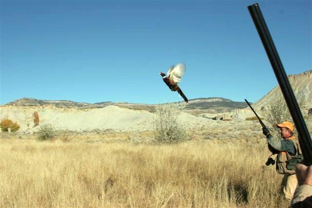 httpswww.outdoorlife.comsitesoutdoorlife.comfilesimport2014importImage2009photo722._Utah.jpg
