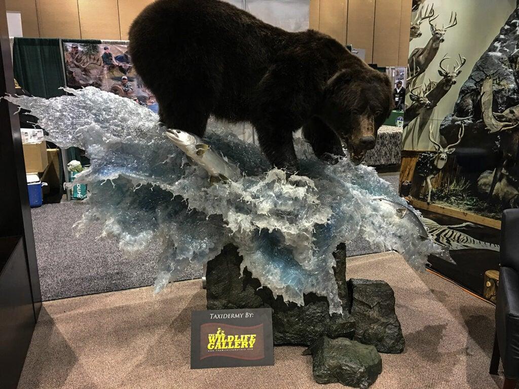 giant brown bear mount