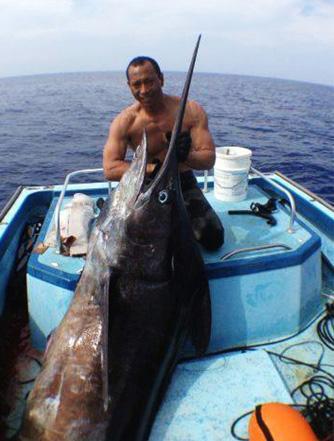 Hawaii Spearfisherman Shoots Record Marlin