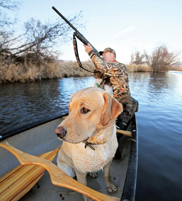 Five Simple Duck Hunting Tips