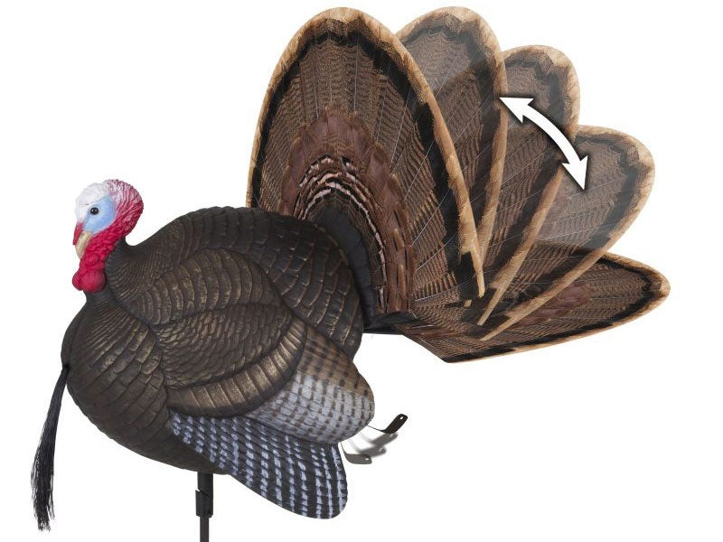 turkey decoys