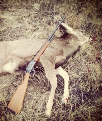 The .25/20: A Favorite Deer Rifle, a Thanksgiving Gift