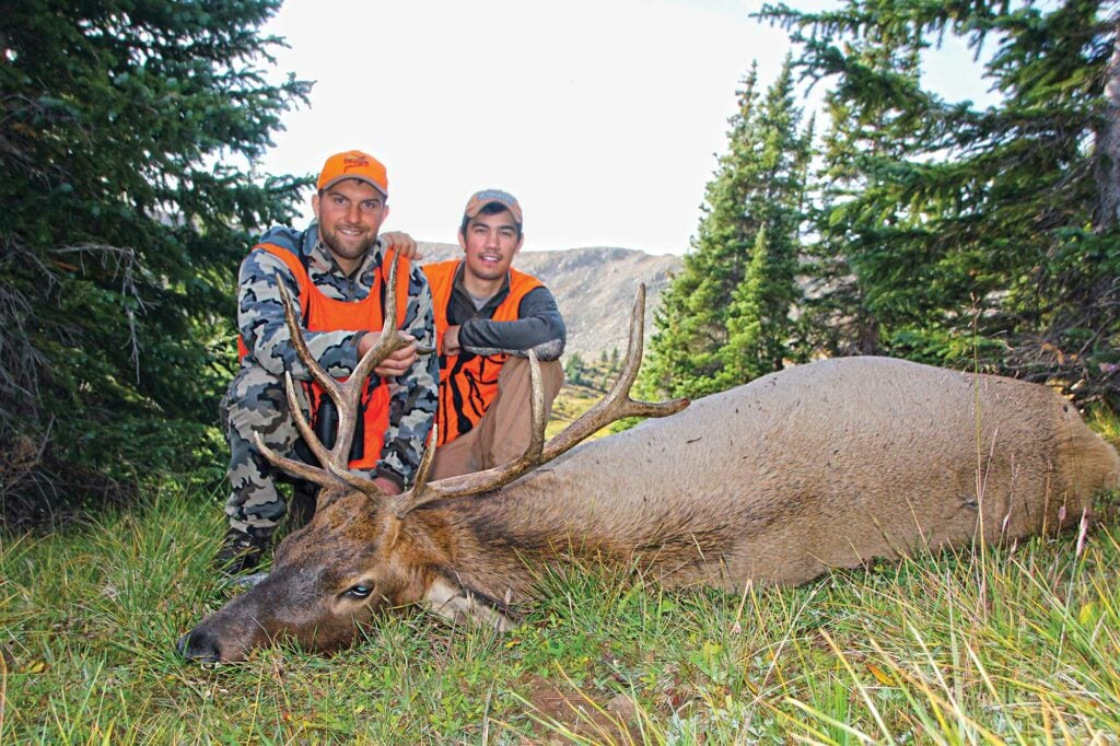 cousins with bull elk