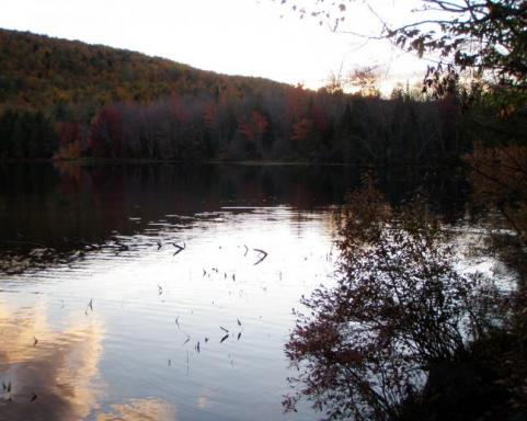 httpswww.outdoorlife.comsitesoutdoorlife.comfilesimport2014importImage2009photo7Decfoliage_51.jpeg