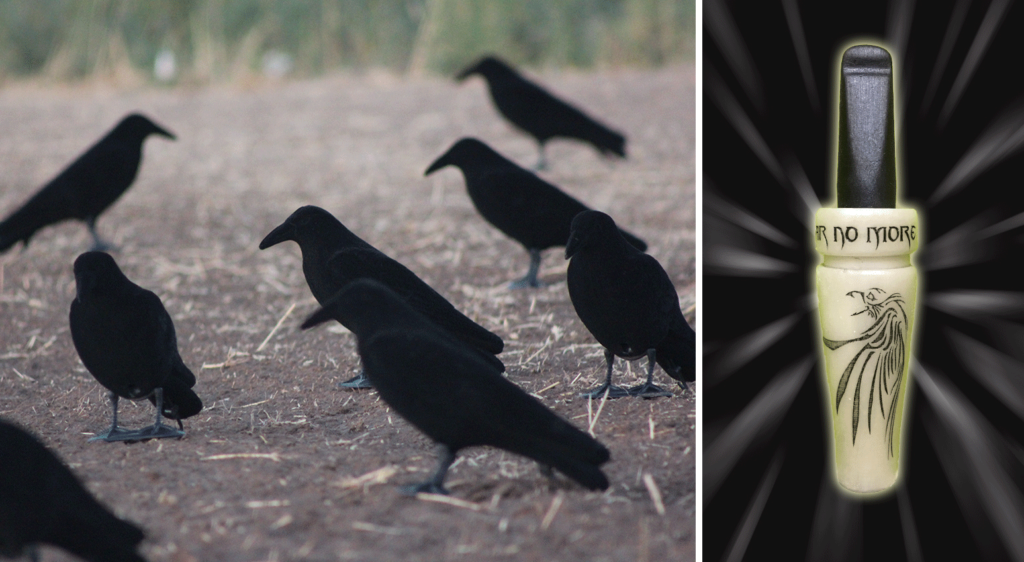 Soar No More Crow Decoys and Call