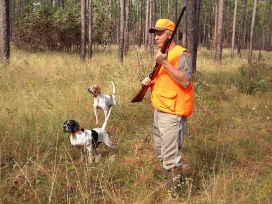 How to Keep Your Gun Dog Safe and Healthy Throughout the Hunting Season