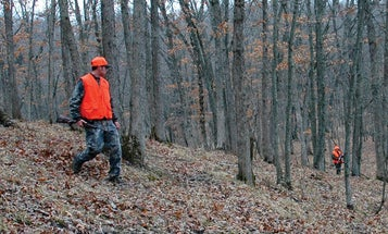 4 Ways to Drive Deer with Just Two Hunters
