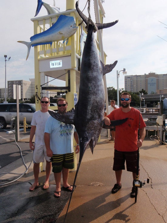 Virginia Angler Shatters State Swordfish Record