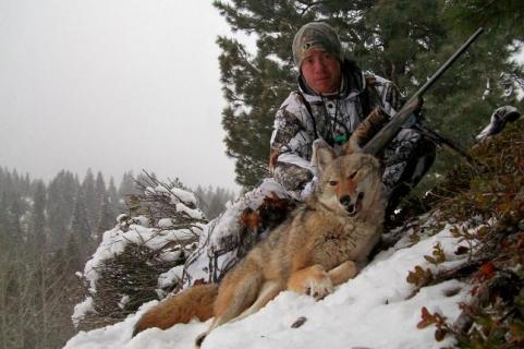 httpswww.outdoorlife.comsitesoutdoorlife.comfilesimport2013images201302bestcoyotes_07_0.jpg
