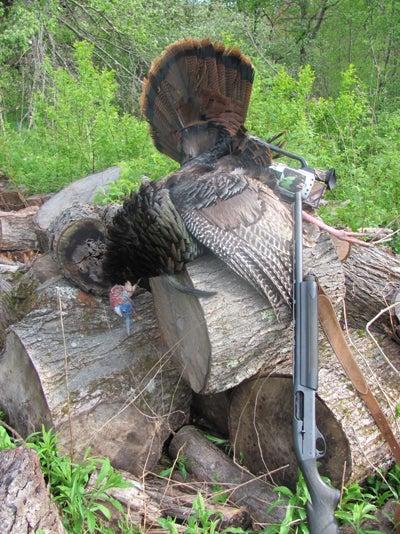 httpswww.outdoorlife.comsitesoutdoorlife.comfilesimport2014importImage2010photo6Mass_Ger_2010_100.jpg