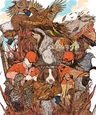 Upland Hunting Guide: 6 Best Bird Hunts for the 2013 Season
