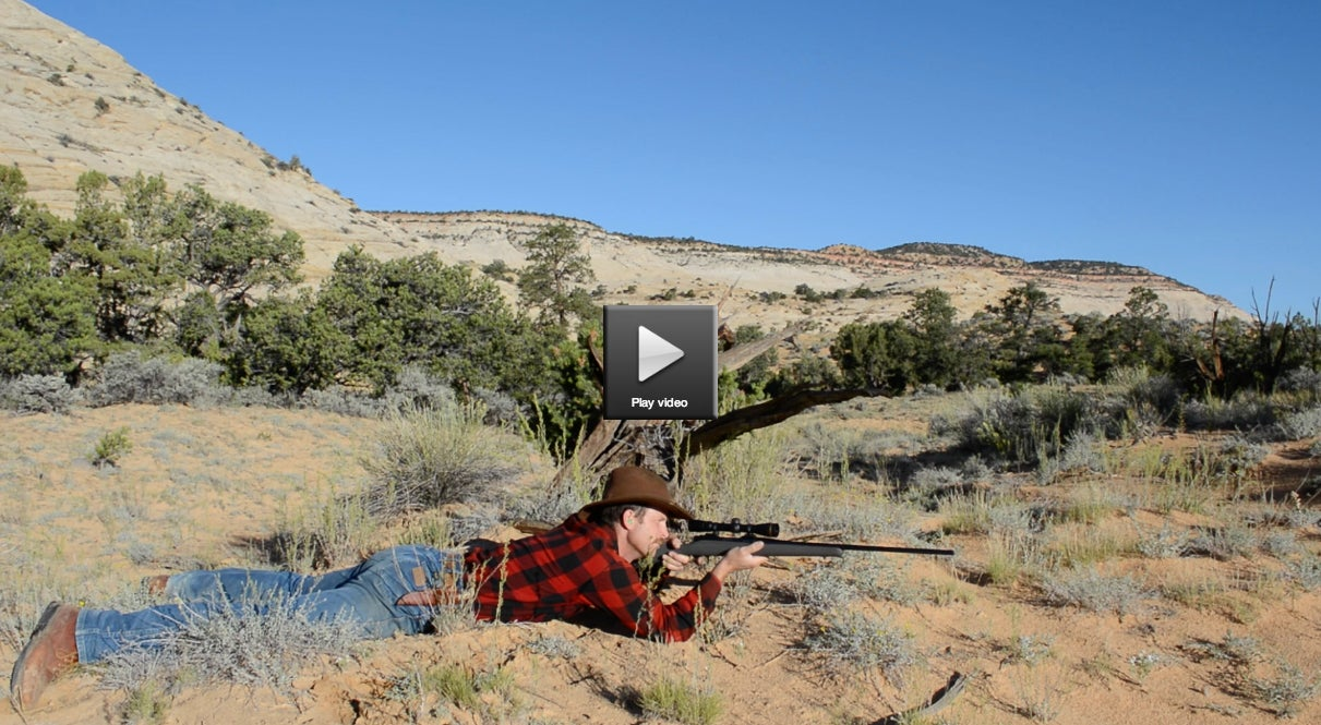 Video: Fast Target Acquisition With A Rifle