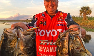 Four Must-Have Bass Lures For Florida