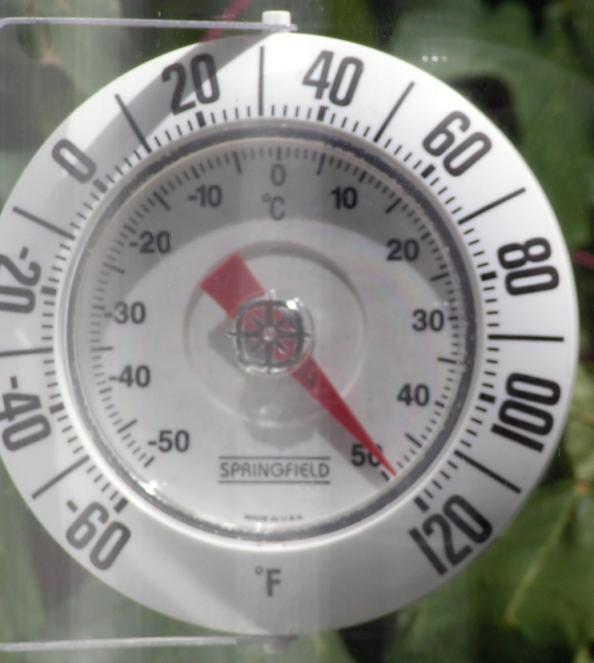 Survival Medicine: Signs and Field Treatments for Heat Illnesses