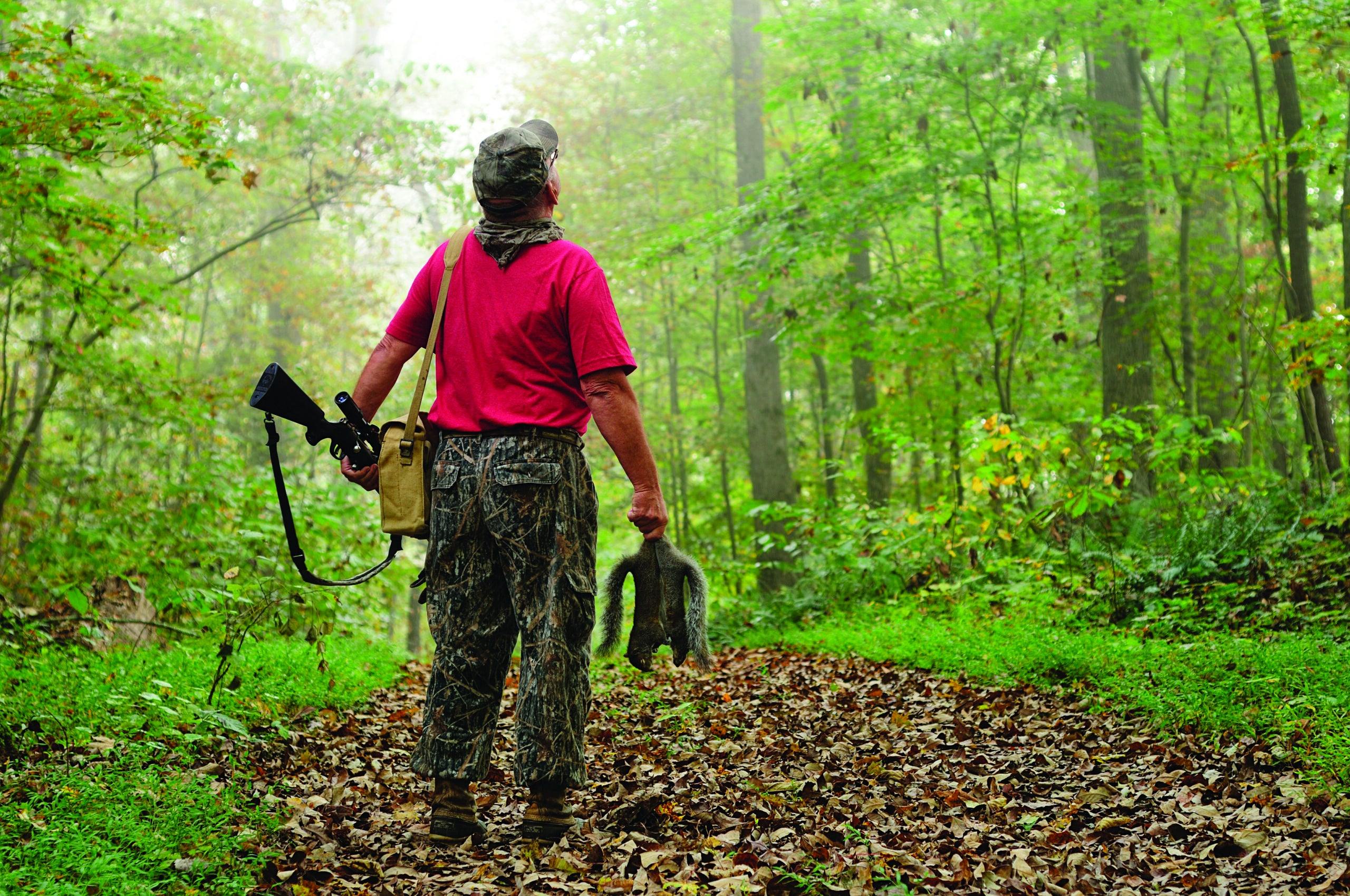 Look for Soft-Mast to Find Early-Season Squirrels