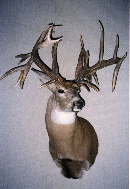 waters kansas buck