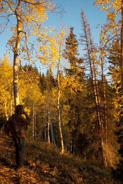 httpswww.outdoorlife.comsitesoutdoorlife.comfilesimport2014importImage2010photo6DSC_0221.jpg