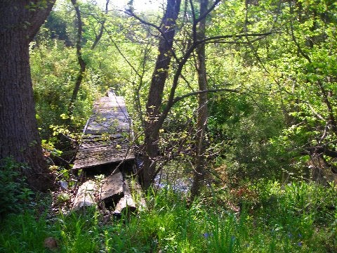 httpswww.outdoorlife.comsitesoutdoorlife.comfilesimport2014importImage2009photo6Ray_18_0.jpeg