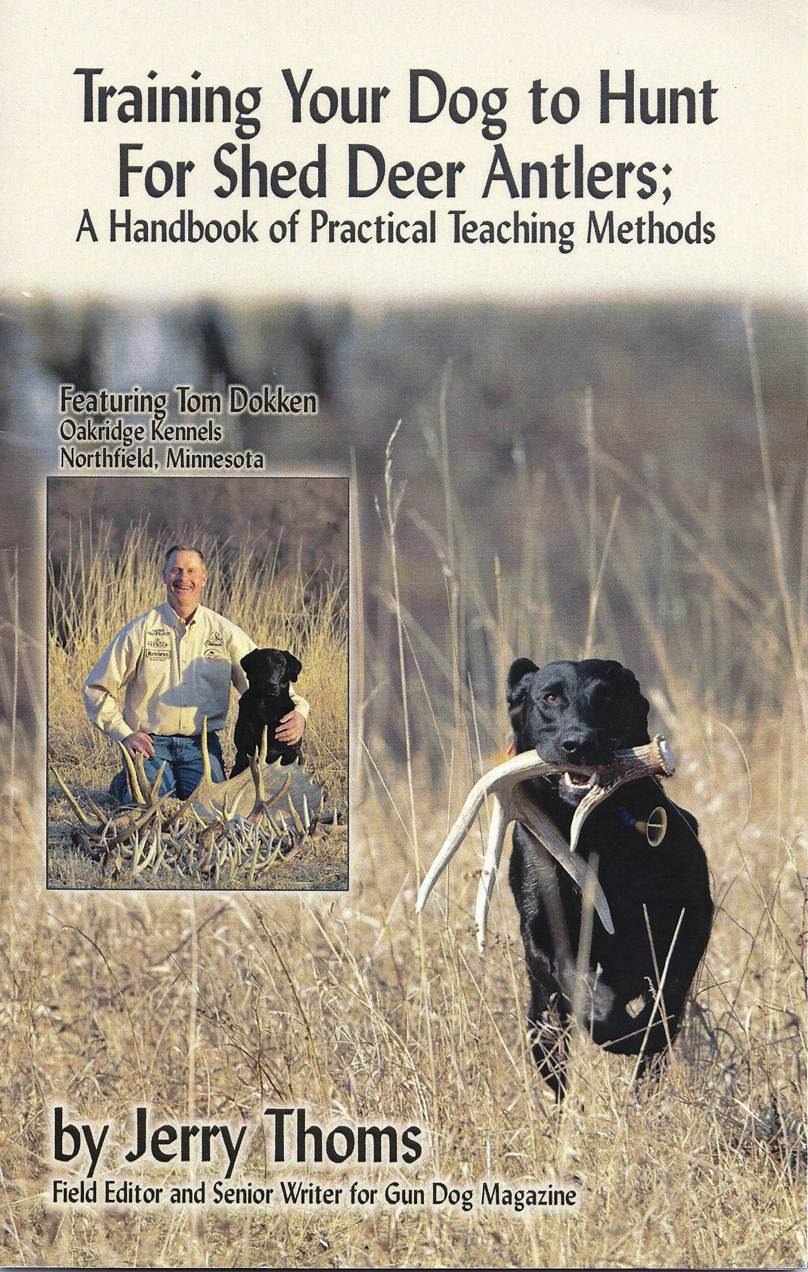 Train Your Dog to Hunt Sheds