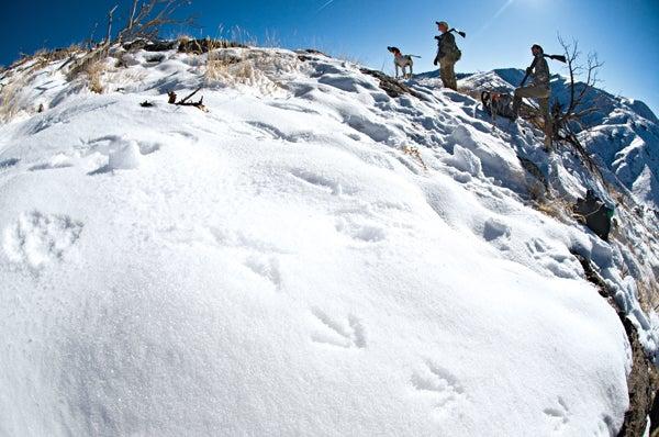 httpswww.outdoorlife.comsitesoutdoorlife.comfilesimport2014importImage2010photo30010ODL0210CHU08.jpg