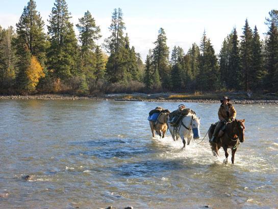 httpswww.outdoorlife.comsitesoutdoorlife.comfilesimport2014importBlogPostembedMcKeanMoose6.jpg