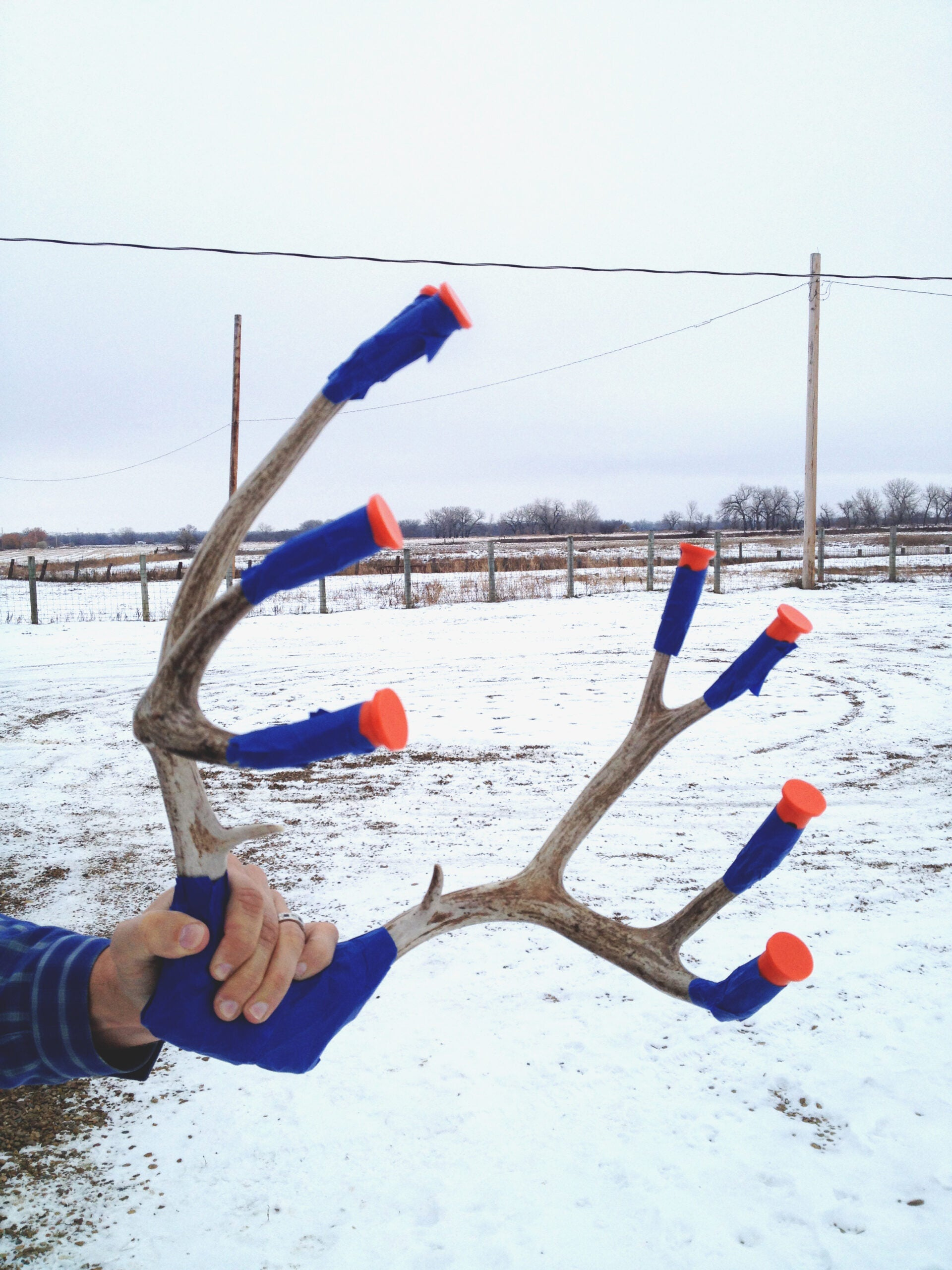 Point Guard: New Product Protects Antler Tines