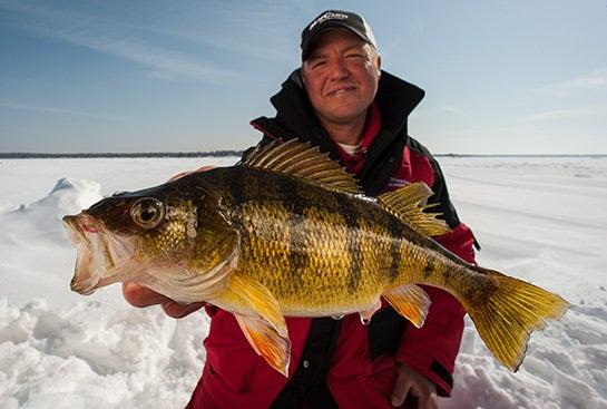Ice Fishing Tips: How to Jig Up Jumbo Perch